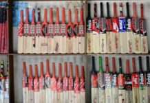 cricket-bat-size