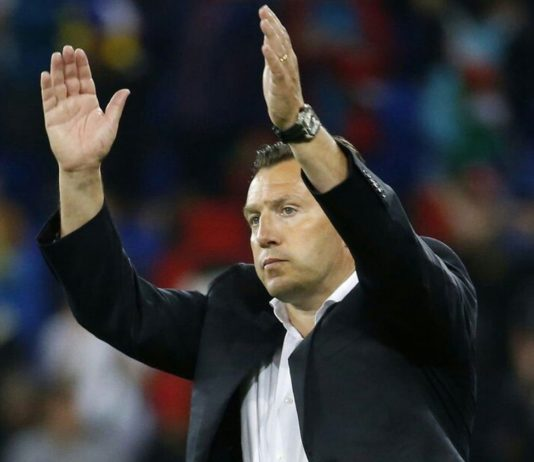 Marc Wilmots sacked as Belgium coach
